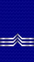 Sleeve blue po 1