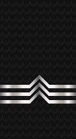 Sleeve black po 1