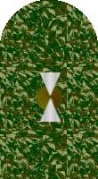 Sleeve cadet camo 3