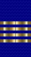 Sleeve blue captain