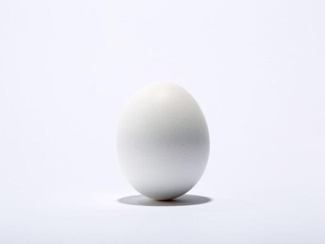 File:Egg Official Art .jpg