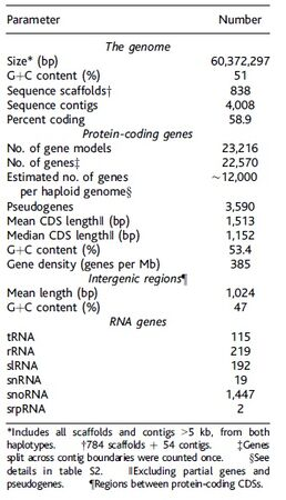 Tcruzi summary table
