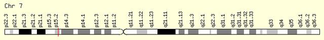 File:HOXA1-gene.png