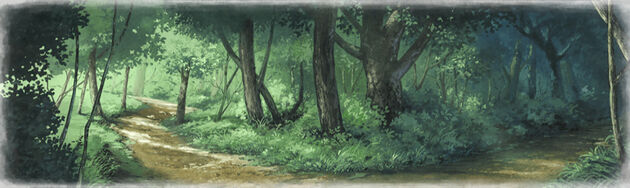 Leanbluff forest