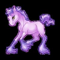 Lilac Paaefarin Baby