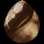 Bay Pinto Alicorn Egg