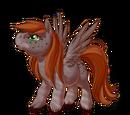 Dusky Evening Pegasus