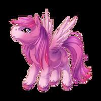 Roses Pegasus Baby