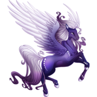 Twilight Tear Pegasus