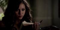 Katherine's Diary