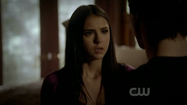 File:2x20-The-Last-Day-damon-and-elena-21541586-1280-720.jpg