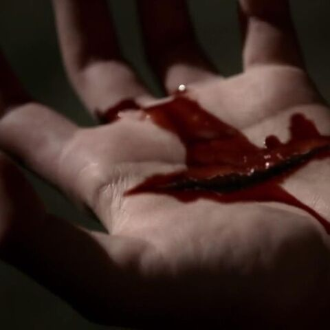 Stefan's hand is cut when <a href=
