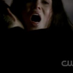 Stefan feeding on Dana