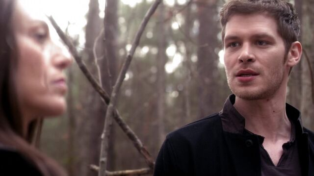 File:Normal TheOriginals220-1148Klaus-Dahlia.jpg