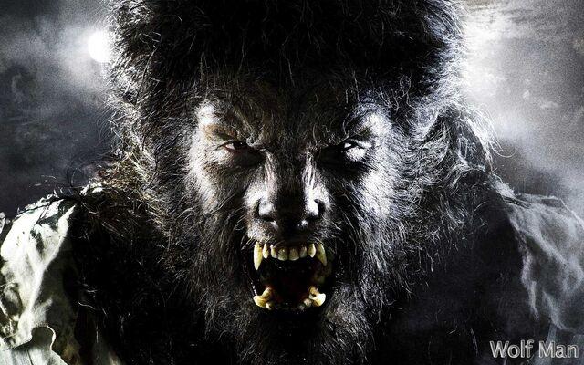 File:The-Wolfman-werewolves-32243434-1680-1050.jpg