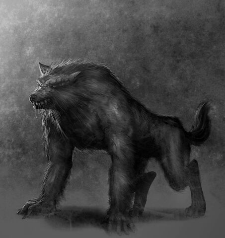 File:Werewolf-Drawings-werewolves-7325040-800-910.jpg