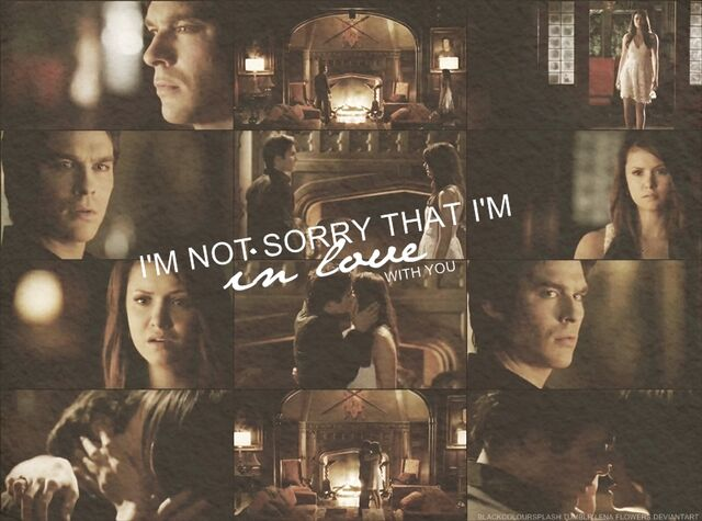 File:Damon elena i m not sorry by lenaflowers-d65nqvf.jpg