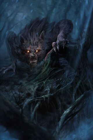 File:Forest wolf.jpg