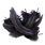 Inx Raven Feathers