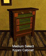 Medium Select Kojani Cabinet