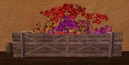Medium red purple and yellow flower box