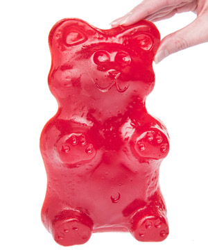 File:Grizzly bear.jpeg