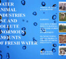WATER: Animal industries use and pollute enormous amounts of fresh water
