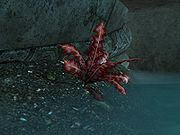 180px-SR-flora-Crimson Nirnroot