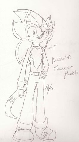 File:Mature picture of Thunder Punch -Complete-.jpg