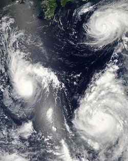 Released to Public- Three Typhoons in Pacific on August 7, 2006 by Jeff Schmaltz (NASA Image)