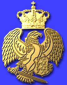Airforce badge