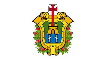 De facto flag of Veracruz.
