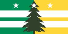 Eastern Washington Regional Flag