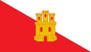 MX-TLA flag proposal Hans 1