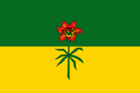 SK Flag Proposal Jack Expo