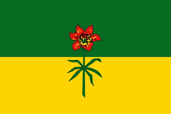 File:SK Flag Proposal Jack Expo.png
