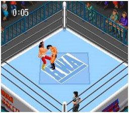 File:Super Fire Pro Wrestling.jpg