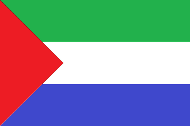 File:Flag Of The Viadalvian Republic.png