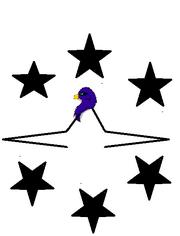 Confederate Emblem