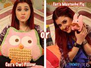 Owl or Pig