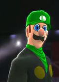Luigi 2k14 vgcw