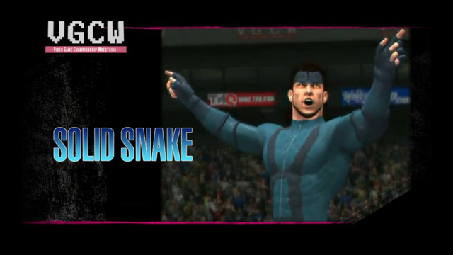 File:VGCW-standby Snake.png