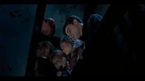 Harry Potter and the Order of the Phoenix - Extendable ears