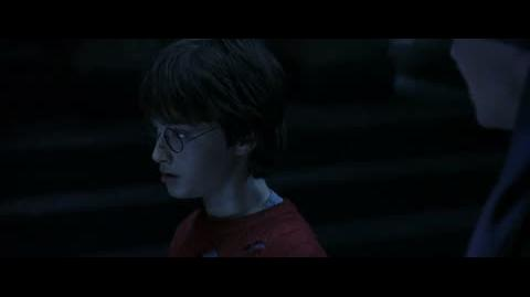 Harry Potter and the Sorcerer's Stone - The man with two faces