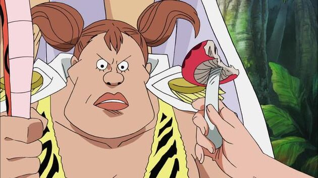 File One Piece - Episode 408 - Landing! The All-Female Island, Amazon Lily
