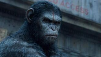 """Dawn of the Planet of the Apes - """"Intense"""" TV Spot"""