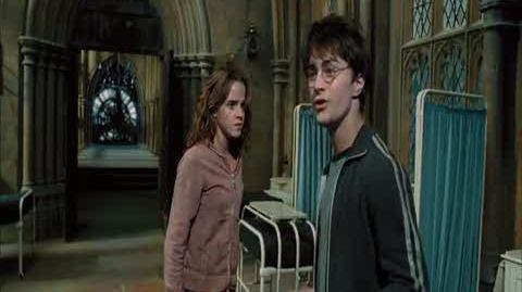 Harry Potter and the Prisoner of Azkaban - Time travel