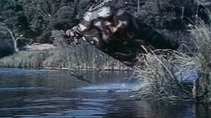 Swamp Thing (1982) - Open-ended Trailer (e15959)