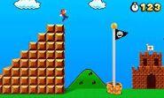 Super Mario 3D Land 5
