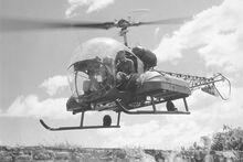 Bell 47 (H-13G) medevac inflight bw